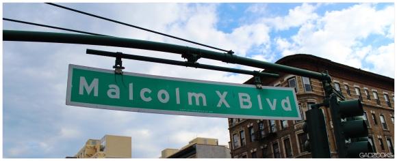 Malcolm X Blvd
